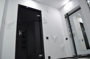 Черная стеклянная дверь из триплекса